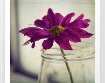 flower photo purple beige- still life - Purple Delight fine art photograph- home decor- wall art- pretty wall decor