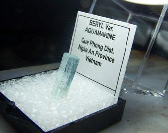 Vietnamese Aquamarine  crystal specimen - perky box mineral mount - gemmy Blue Beryl terminated specimen - coyoterainbow - display box 4G20