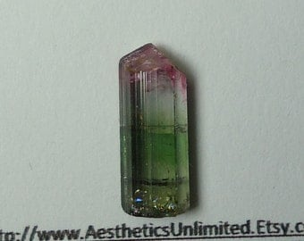 TOURMALINE Bicolor Pink And Green Terminated Crystal From Brazil