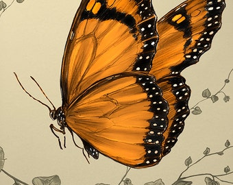 BUTTERFLY Print  - butterfly art print - Monach - butterflies giclee print -  orange - Yellow - COLOR -