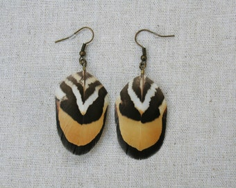 Tribal Reeves pheasant feather earrings orange and brown jewellery jewelry