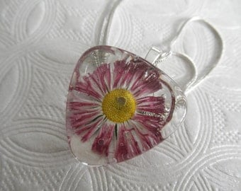 English Daisy In Ombre Magenta-White Pressed Flower Glass Triangle Pendant-Symbolizes Loyal Love-Nature's Art-Gifts For 25