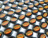Ithaca Beer Company Beer Bottle Caps Lot of 200 Bulk Art Craft Supplies Destash Upcycle Recycle