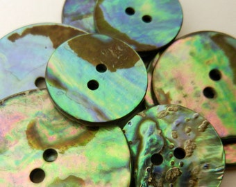 Abalone Button New Zealand Paua Shell 2 Hole 17.5mm Blue Pink Green Natural