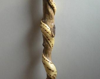 walking stick with snake