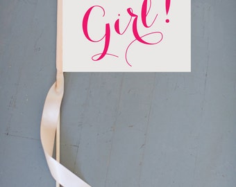 It's A Girl! Sign Handcrafted Baby Announcement | Small Rectangular Banner | Pregnancy Reveal Pregnant Modern Script Font New Baby 1209 SRB