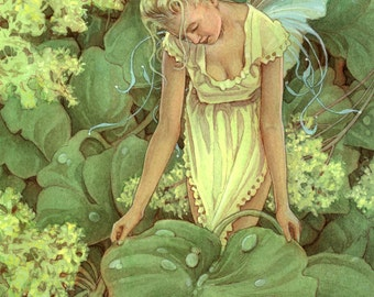 Dew Faery 12x18 Limited Edition Giclee Print