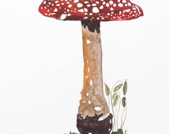 Woodland Forest Floor Study Fly Agaric Mushroom Watercolor Archival Print by Sarah Rose Storm