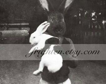 Black Rabbit Art Print, 8.5 x 11 Inch Black and White Bunny Weird Easter Decor, Anthropomorphic Art