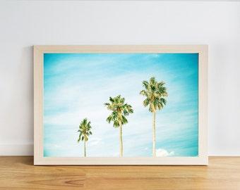 tropical print palm tree coastal decor coastal wall art palm tree decor beach photography nautical decor fine art photography blue aqua