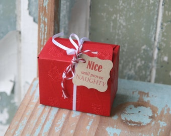 SPECIAL 24 Nice until proven Naughty Gift Tags with red and white twisted twine
