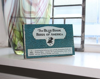 1931 Blue Book Of Birds Of America Vintage Guide Book