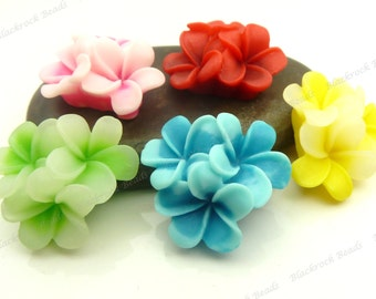 Flatback Resin Flower Cabochons - 10pcs - Yellow, Green, Blue, Red, Pink Mixed Colors - 21x21x10mm - BK5