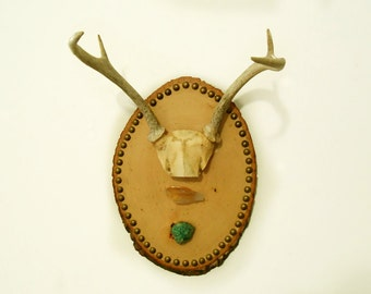 Wood Portrait Wall Hanging with Deer Antlers, Crystal Quartz, and Chrysocolla