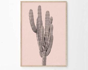 Pink Cactus Art Print Printable | Desert Art Home Decor | Printable Art | Desert Cactus Photography Print | Pink Photographic Art