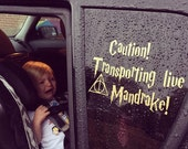 Transporting Live Mandrake Car Decal - Harry Potter Baby on Board Decal - Funny Baby on Board Decal - Harry Potter Baby Decal - Many Colors!