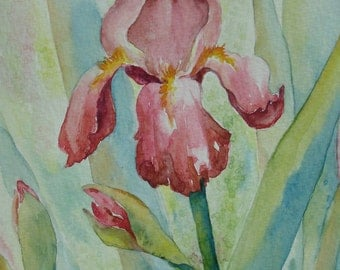 Burgundy iris original watercolor greeting card painting small format