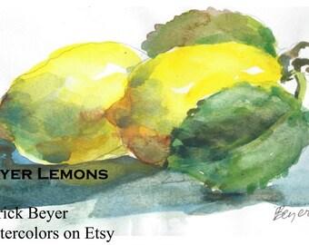Meyer Lemons C502