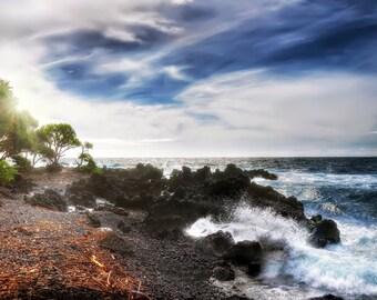 Hawaiian Shore