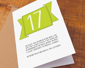 17th Birthday Card / Funny Birthday Card / Funny 17 Card / On This Day You Can / snarky card