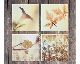 A set of 4 Fine art photography Nature Home decor Beige Mint Color Square Fine print Modern Minimalist Floral Relaxing Girly Fine Wall decor