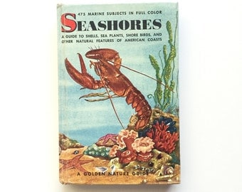 Vintage Hardbound Golden Nature Guide- Seashores / Hardcover Seashores Guide / Vintage Field Guide / Beach Ocean Book / Homeschool Book