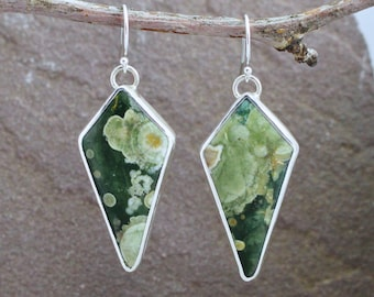 Rainforest jasper & Sterling Silver Earrings