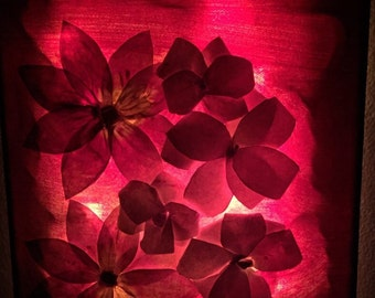 3D art+ night lamp