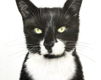 custom pet painting, cat portrait, dog portrait, portrait painting, custom pets, gift idea, custom pet art, cat lover gift
