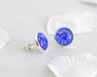 Cornflower Earrings - Stud Earrings - Blue Earrings - Blue Cornflowers - Flower Studs - Flower Earrings - Silver Stud Earrings - Bridesmaid