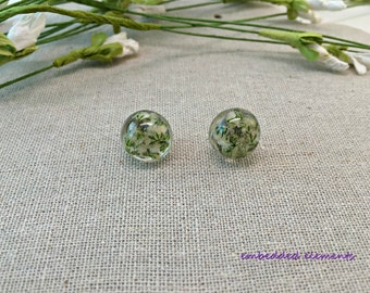 Embedded white baby's breath in clear resin, round domed post earrings