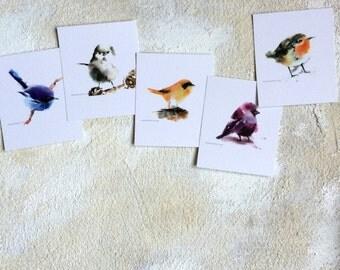 Bird cards set, Watercolor Postcards Set, Bird Painting, Bird Art Card, Minimalist Cute Birdie, Set of 5