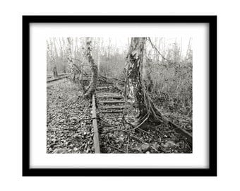 Train photography, railroad, Black and White Photography, trainyard, Black And White Art, Tree Photography, black and white wall art