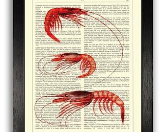 RED SHRIMPS Bathroom Decor Art Print on Book Page, Beach Decor, Nautical Sea Print, Red Bathroom Wall Art, 8 x 10 inches Antique Gift Idea