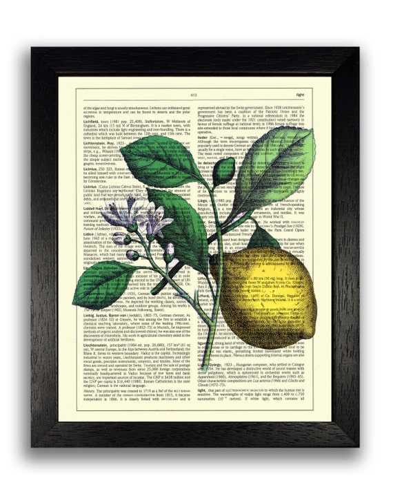 Wall decor vintage lemon art print fruit wall art kitchen for Art prints for kitchen wall