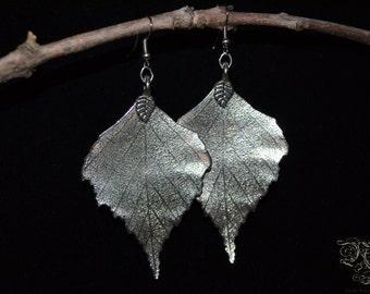 """Earrings """"Silver Forest"""""""