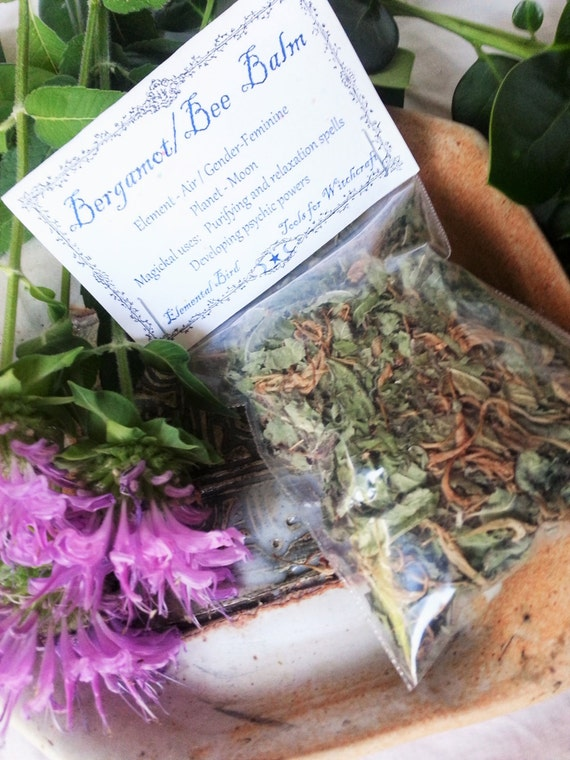 Dried Bergamot Bee Balm for magick Wicca Greenwitch
