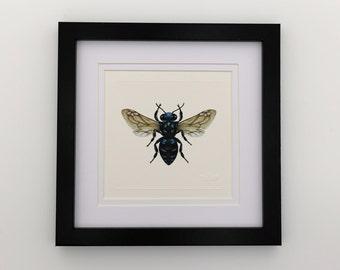 Neon Cuckoo Bee Unframed Miniature Print x 1
