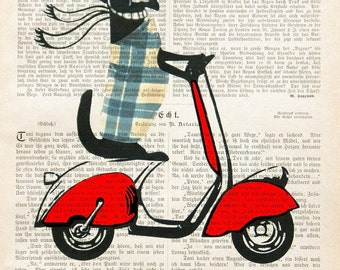Dachshund On Moped doxie Dachshund Art Vespa art Dachshund print Dachshund scooter  wall decor vintage book page Dachshund dictionary art