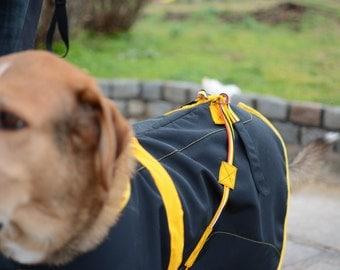 Pet Raincoat and hoods