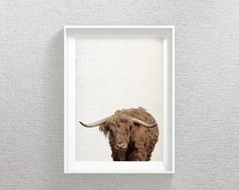 Buffalo Print, Bison Wall Art, Camel Buffalo, Camel Decor, Buffalo Photography, Bison Printable Art, Buffalo Printable, Modern Minimal Art