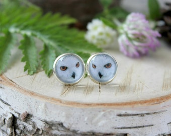 Snowy Owl Stud Earrings, Silver Plated, Glass Cabochon