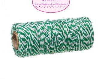 100 m coil Twine Baker