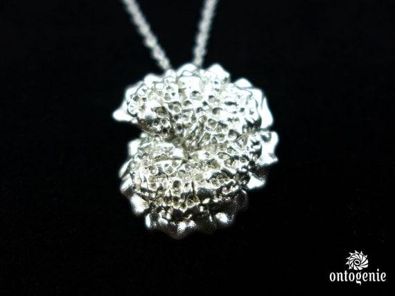 Plankton Foraminiferan - Morozovelloides pendant - Marine Biology - Science Jewelry in bronze, brass & silver