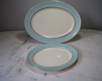 2 oval, duck egg blue polka dot serving plates