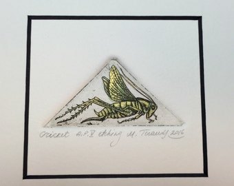 Cricket. Original hand pulled miniature etching.