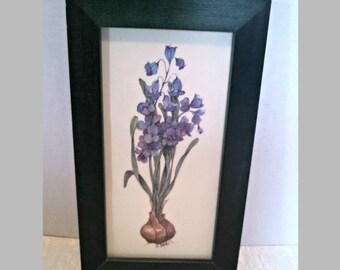 "Vintage Print, ""Spanish Bluebells,"" Framed Watercolor Print by H. Soule, Blue Wood Hyacinth, Signed by Artist, Green Wood Frame"