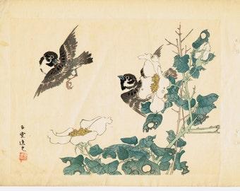 "1913, Japanese Woodblock print, antique, Utsumi Kichido, "" Spallow"""