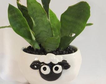 Black and white sheep planter