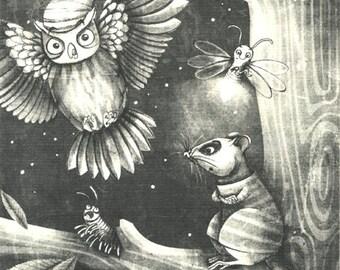 Nocturnal animals illustration